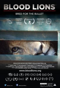 Blook Lions poster